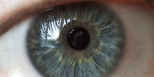 eye1-600x300